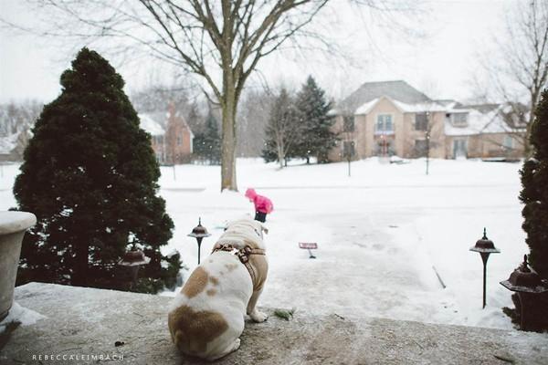Tình bạn cực đáng yêu giữa cô bé 4 tuổi và chó cưng 10