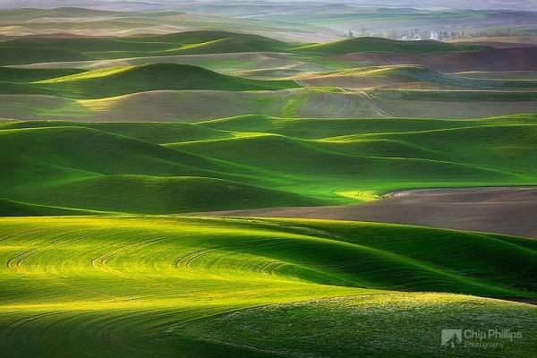 """Ngắm những thảo nguyên xanh """"bất tận"""" trên khắp thế giới 11"""