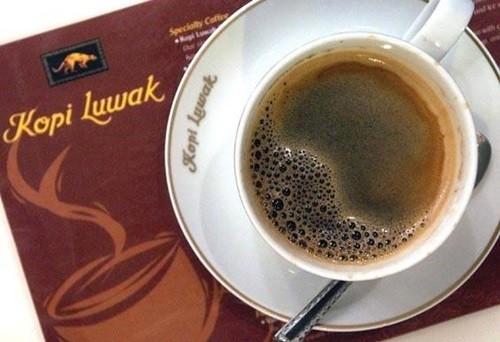 Sự thật tàn nhẫn sau mỗi ly cà phê đắt nhất thế giới 1