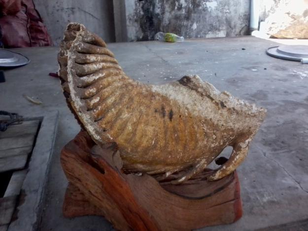 Những hàng hóa Việt Nam kỳ quái rao bán trên mạng 1