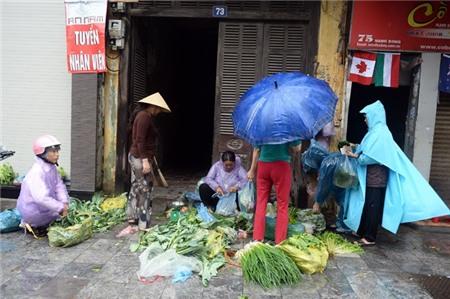 Hà Nội xáo trộn vì bão Haiyan 12