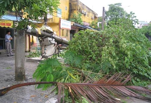 Cận cảnh sự tàn phá sau bão số 6 4
