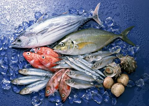 Mẹo chọn các loại hải sản tươi, ngon 1