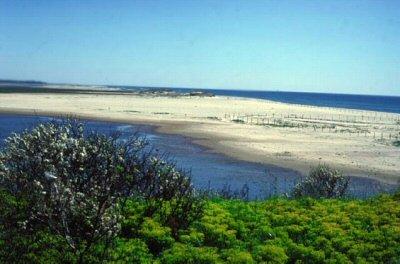 Ngắm 10 bãi biển tuyệt vời nhất nước Mỹ 10