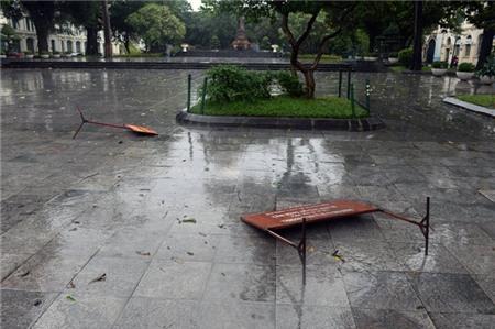 Hà Nội xáo trộn vì bão Haiyan 1