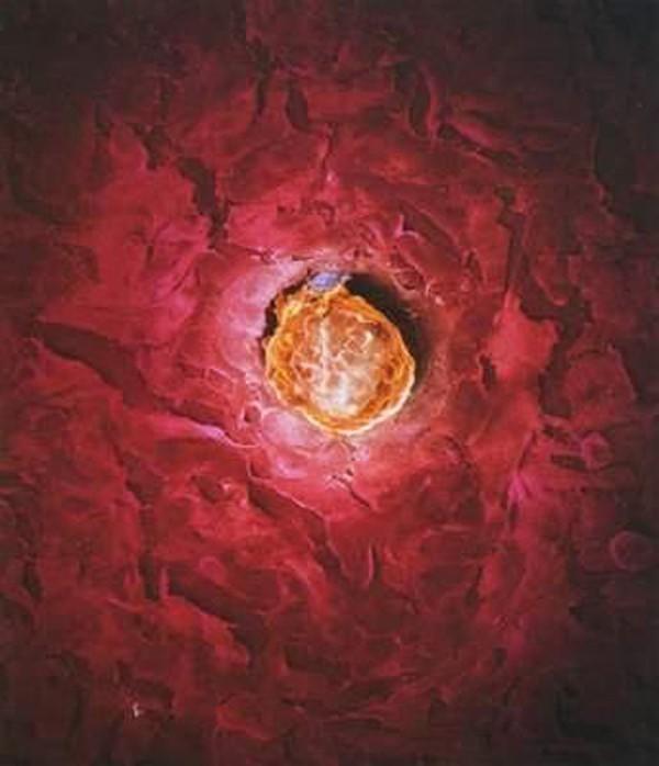 """""""Soi"""" quá trình thụ thai dưới ống kính hiển vi 8"""
