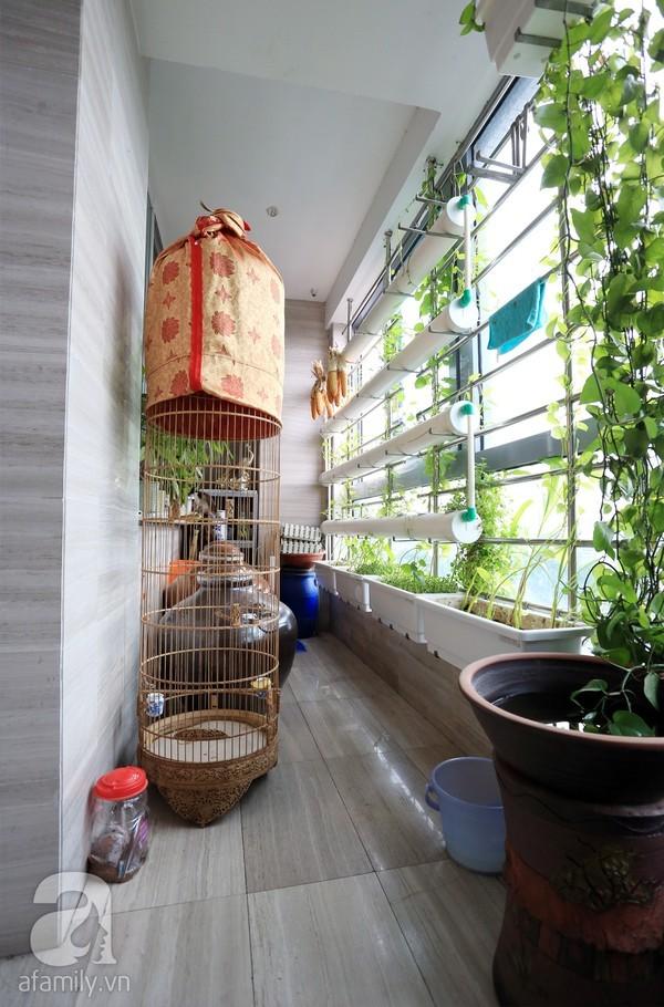 Đầy cảm hứng với căn hộ tràn sắc xanh tại Hoàng Hoa Thám 16