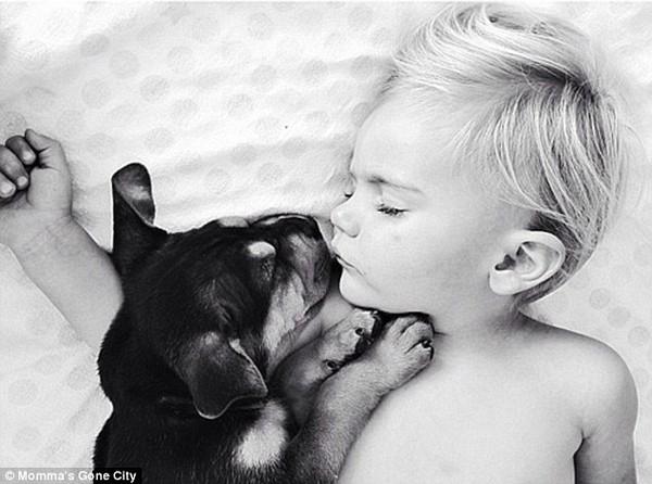 Chùm ảnh siêu dễ thương khi bé ngủ cùng cún con 9