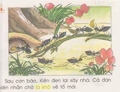 Giật mình với hình minh họa trong sách giáo khoa Tiếng Việt 1 1