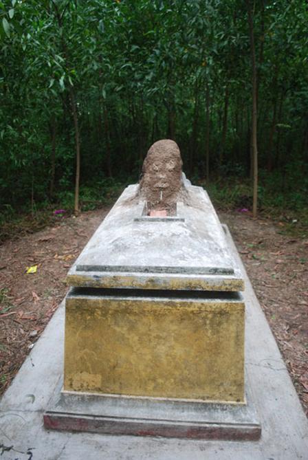 Ụ mối hình đầu người mọc trên mộ 2