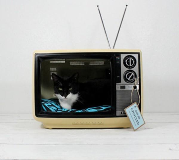 5 ý tưởng bất ngờ biến tivi cũ thành đồ dùng hữu dụng 4