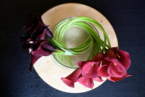 3 mẫu hoa rum dễ cắm cho ngày 20/10 16