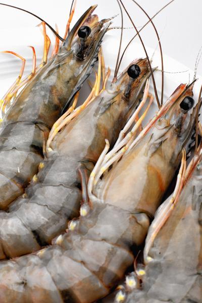 Mẹo chọn các loại hải sản tươi, ngon 3