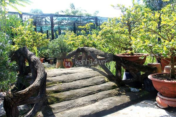 Hé lộ hình ảnh biệt thự 5000m² của gia đình Lâm Chi Khanh 4