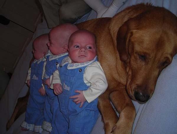 Chùm ảnh cực đáng yêu và hài hước về bé với cún con 12