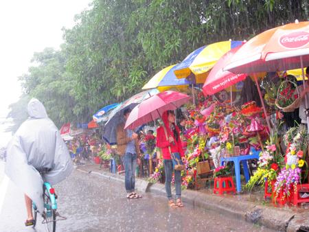 Đội mưa, vượt lũ, mua hoa cho người thương 19