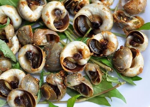6 món sò, ốc rang muối ớt gây nghiện 6