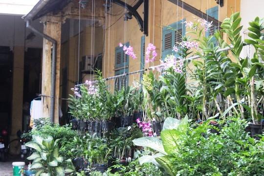 Biệt thự 100 tuổi giữa Sài Gòn được rao bán 35 triệu USD 10