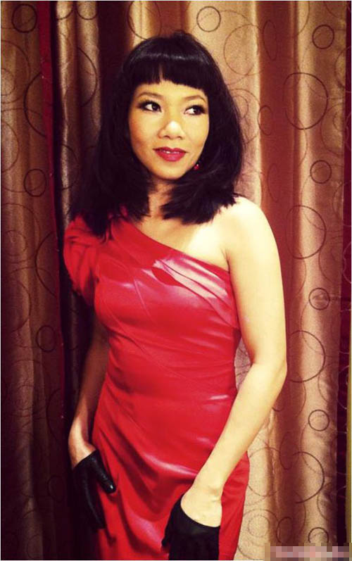 Diva Việt quyến rũ khi diện váy gam đỏ 17