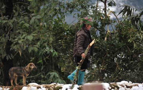 Những đôi chân trần trên tuyết Sa Pa làm nhiều người rơi lệ 9