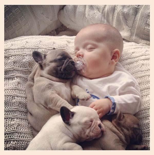 Chùm ảnh cực đáng yêu và hài hước về bé với cún con 1