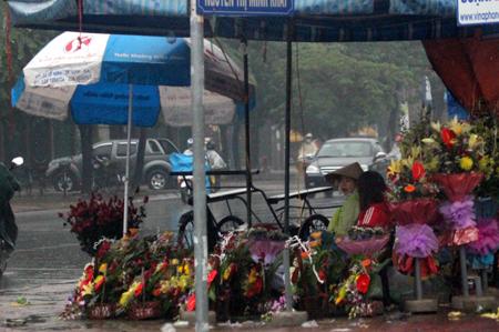 Đội mưa, vượt lũ, mua hoa cho người thương 16