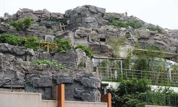 """Cận cảnh núi """"mọc"""" trên nóc tòa nhà cao 26 tầng 4"""