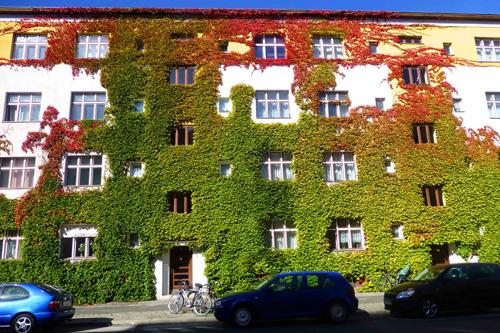 Khung cảnh sang thu tuyệt đẹp ở Đức 3