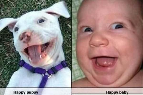 Chùm ảnh cực đáng yêu và hài hước về bé với cún con 7