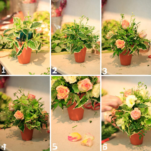 Tự cắm hoa hồng đẹp và sang trọng 4