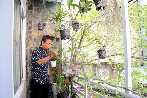 Thăm nhà phố, nhà vườn của nghệ sĩ hài Hồng Tơ 6