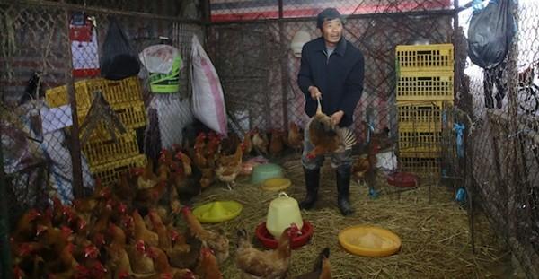 Kinh hoàng phanh phui những vụ thịt giả ở Trung Quốc 8