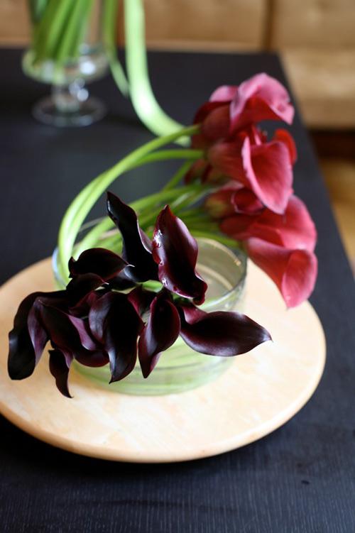 3 mẫu hoa rum dễ cắm cho ngày 20/10 15