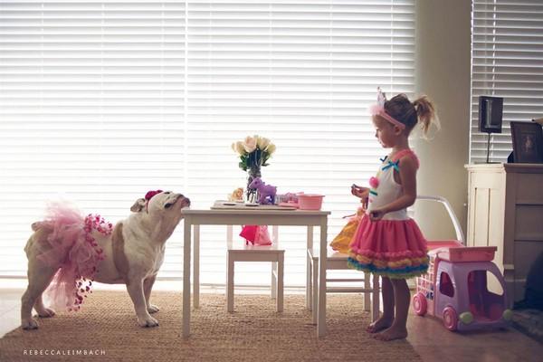 Tình bạn cực đáng yêu giữa cô bé 4 tuổi và chó cưng 12