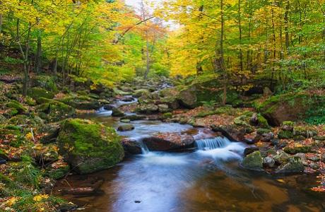 """Những """"thiên đường"""" mùa thu đẹp nhất thế giới 3"""