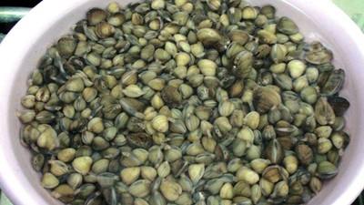 Hến xào lá lốt giản dị ngon cơm 1