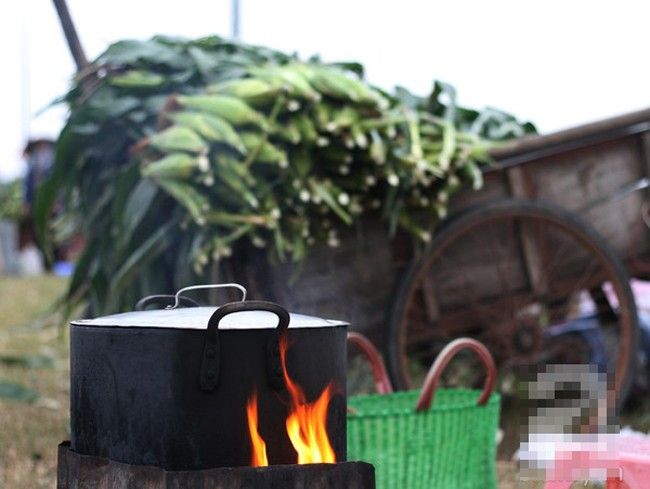 Những phụ nữ bán ngô luộc thu 30 triệu đồng/tháng 3