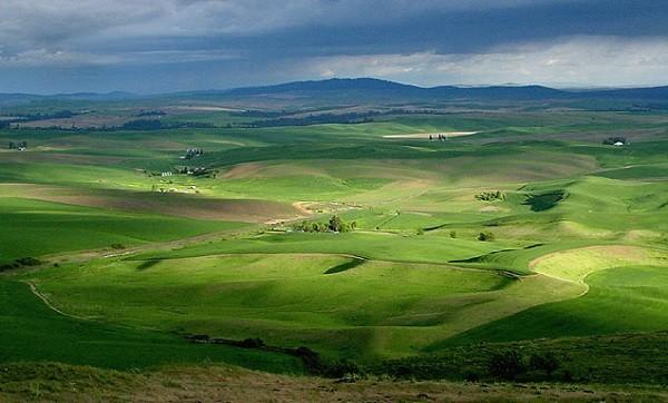 """Ngắm những thảo nguyên xanh """"bất tận"""" trên khắp thế giới 12"""