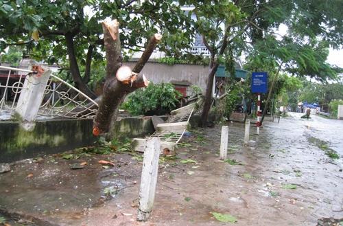 Cận cảnh sự tàn phá sau bão số 6 6
