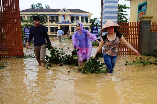 Xót xa trường lớp ngập tràn bùn đất sau lũ lớn 3