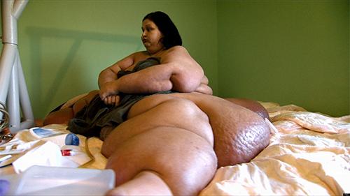 """Cận cảnh sinh hoạt của """"cô nàng khổng lồ"""" nặng gần nửa tấn 1"""