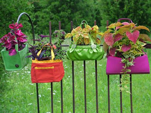 10 cách táo bạo trồng vườn hoa xinh lung linh 10