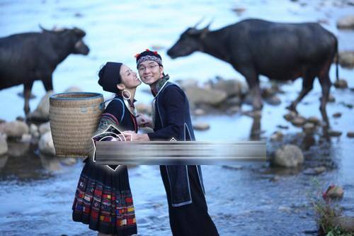 Ảnh cưới độc đáo của các cặp vợ chồng sao Việt 22
