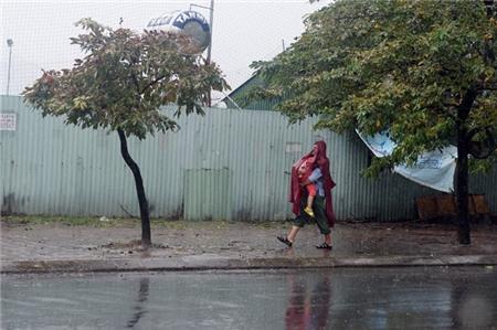 Hà Nội xáo trộn vì bão Haiyan 9