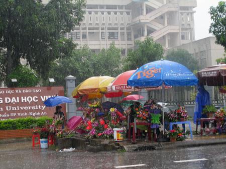 Đội mưa, vượt lũ, mua hoa cho người thương 9