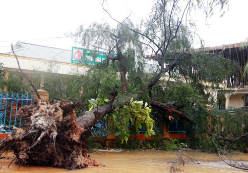 Miền Trung tan hoang sau bão 3