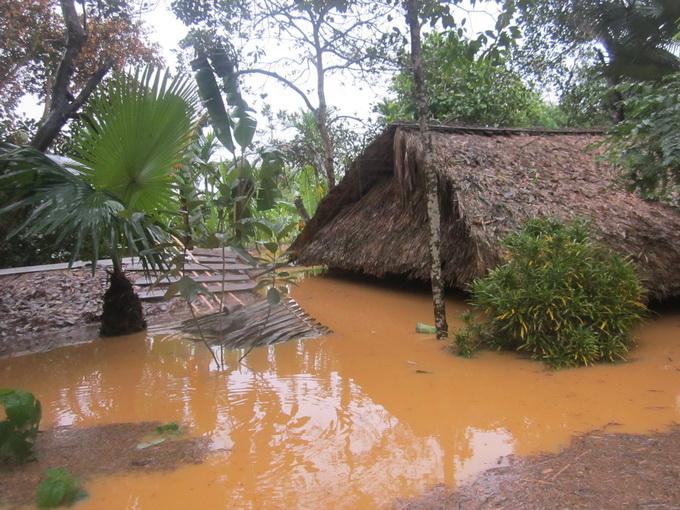 Nước lũ chạm mái nhà, dân Hà Tĩnh đói rét 6
