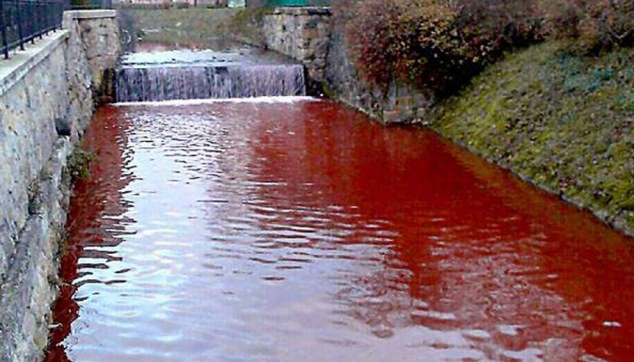 Nước sông chuyển màu máu chỉ trong một đêm 1