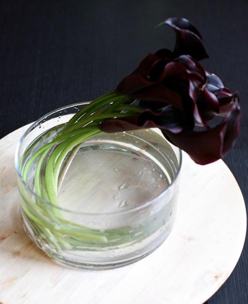 3 mẫu hoa rum dễ cắm cho ngày 20/10 13