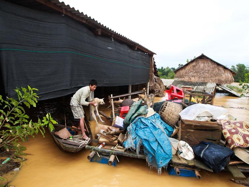Nước lũ chạm mái nhà, dân Hà Tĩnh đói rét 11